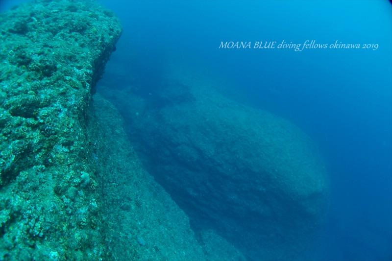 沖縄フォトダイビング