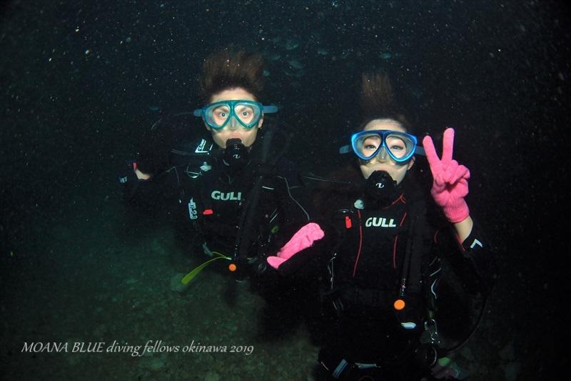 青の洞窟体験ダイビング