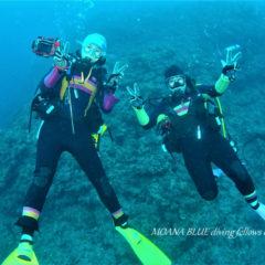 沖縄ウミウシダイビング