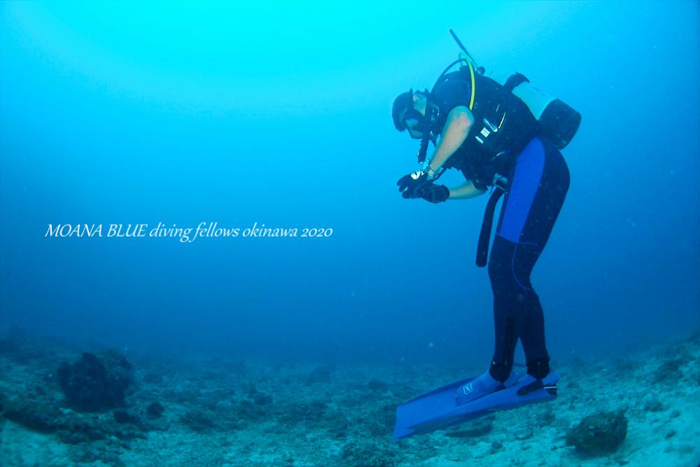 沖縄ファンダイビング|恩納村ダイビング