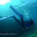 沖縄ダイビングガイド