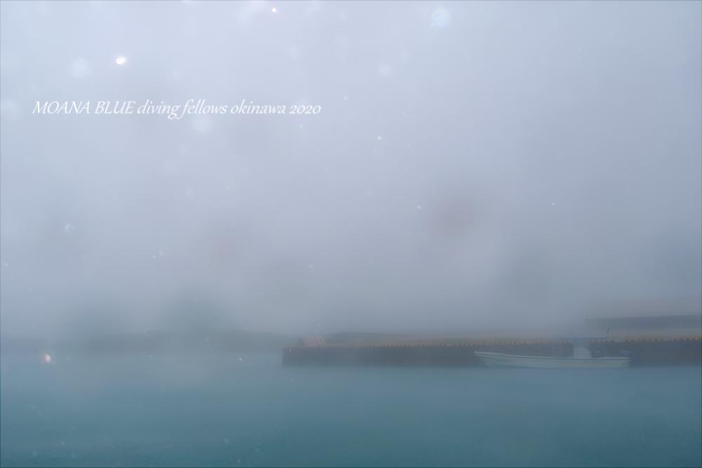 沖縄恩納村|ボートファンダイビング