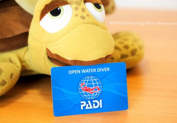 PADIオープン・ウォーター・ダイバー|ダイビングライセンス