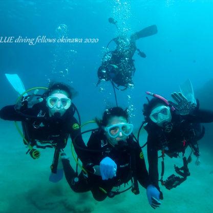 沖縄体験ダイビング|ゴリラチョップ