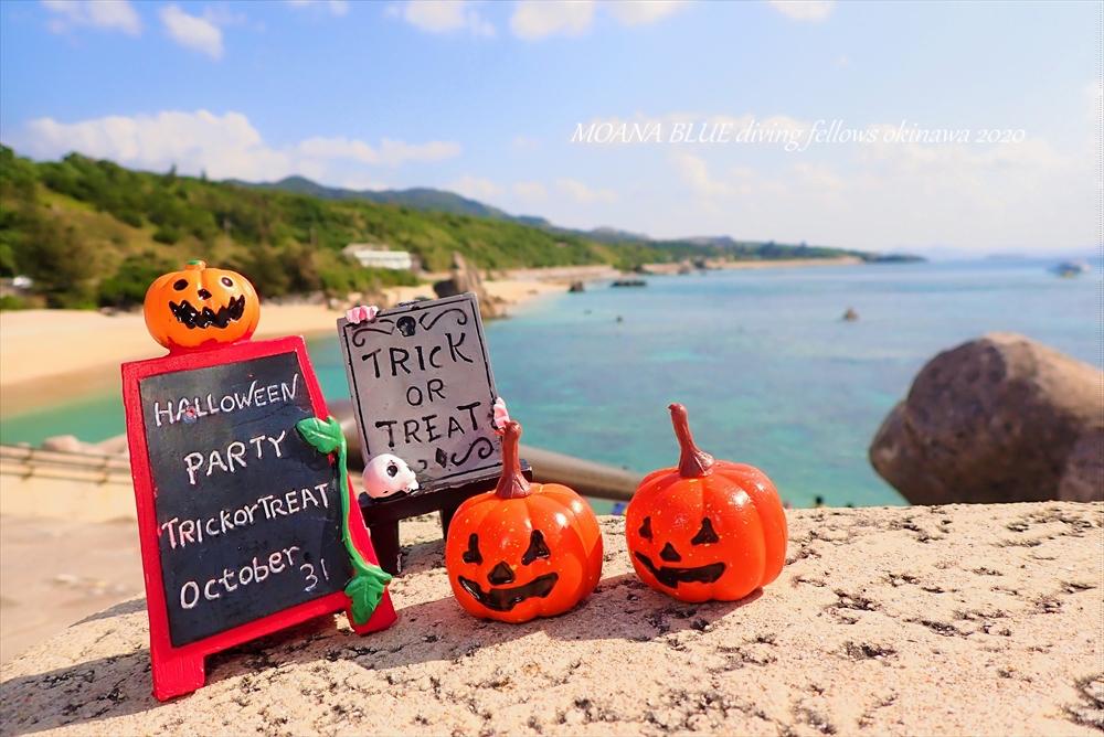 沖縄ファンダイビング|ハロウィンダイブ