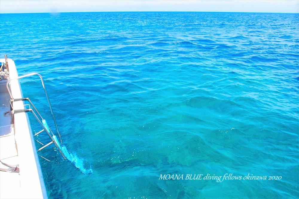 沖縄恩納村体験ダイビング