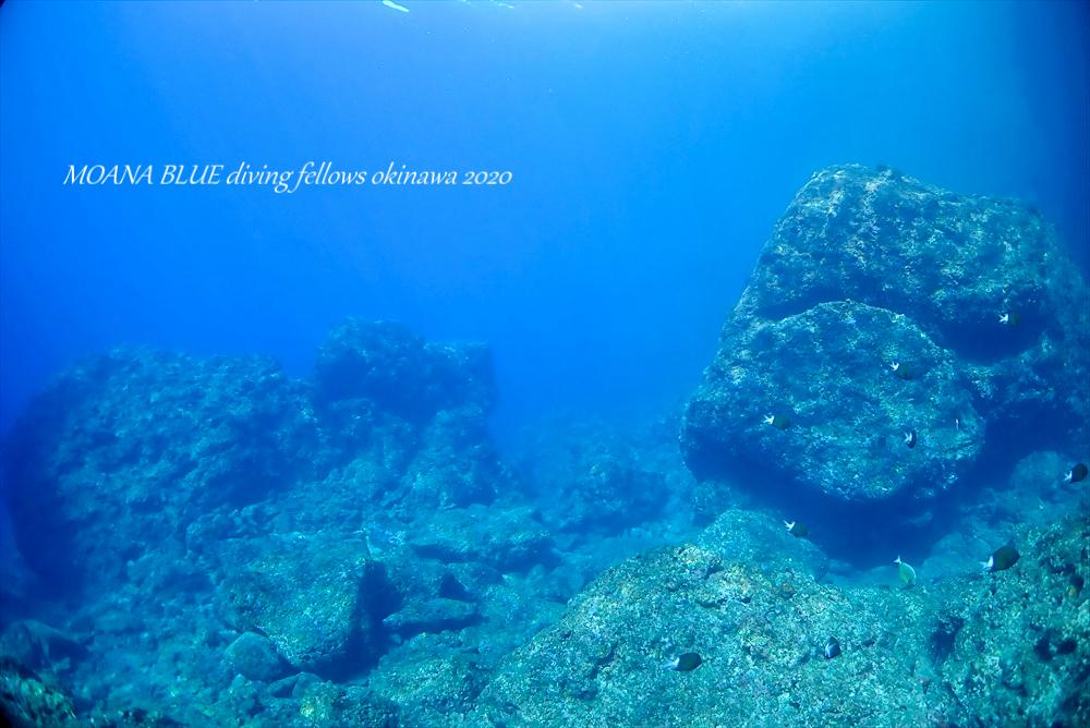 沖縄ファンダイビング|辺戸岬