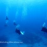 沖縄ファンダイビング|ボートダイビング