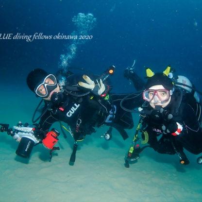 沖縄ファンダイビング|ウミウシダイビング