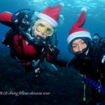 恩納村ファンダイビング|クリスマスダイブ