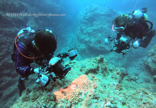沖縄フォンダイビング|ボートダイビング
