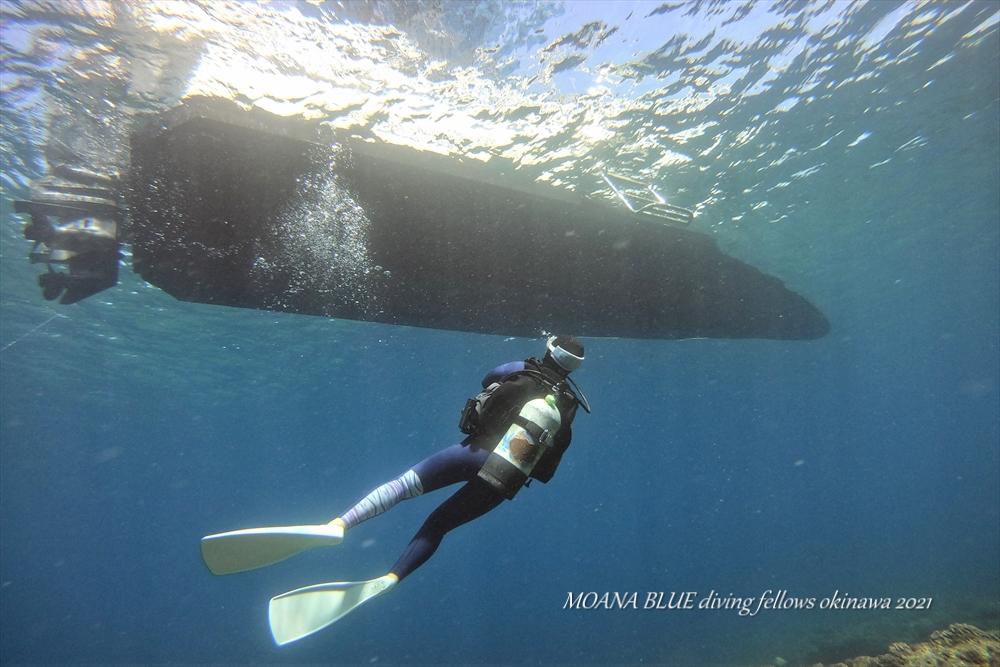 沖縄フォトダイビング|ボートダイビング