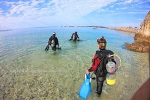 沖縄ビーチフォトダイビング|北部ビーチ