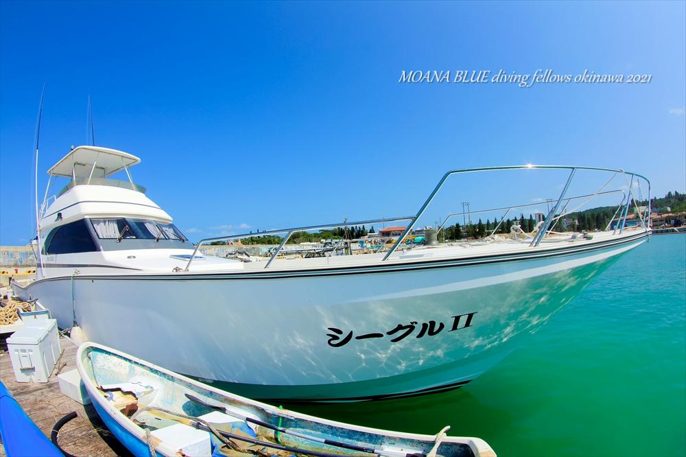 恩納村ホエールウォッチング協会|沖縄