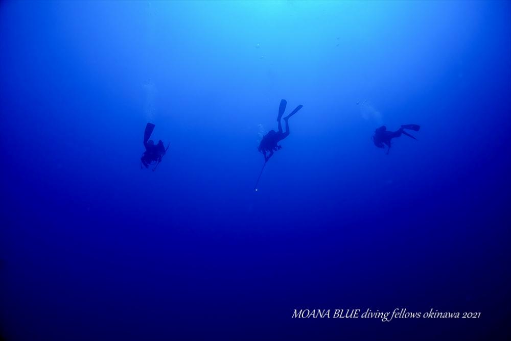 沖縄最強ポイント|トライアングル