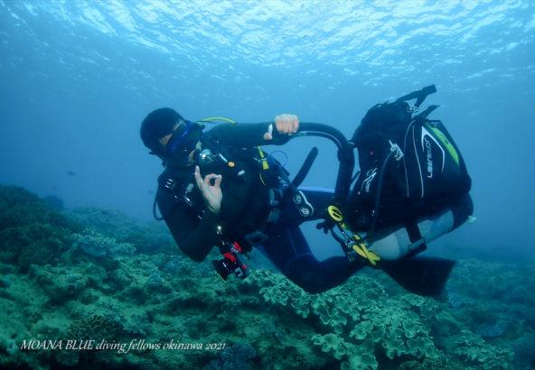 体験ダイビング|沖縄