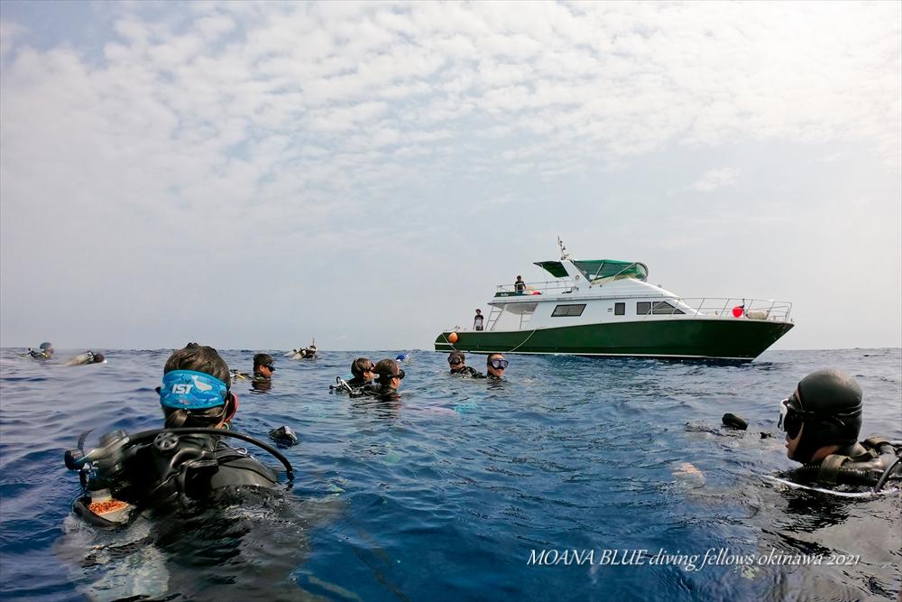 沖縄ボートダイビング|水中写真