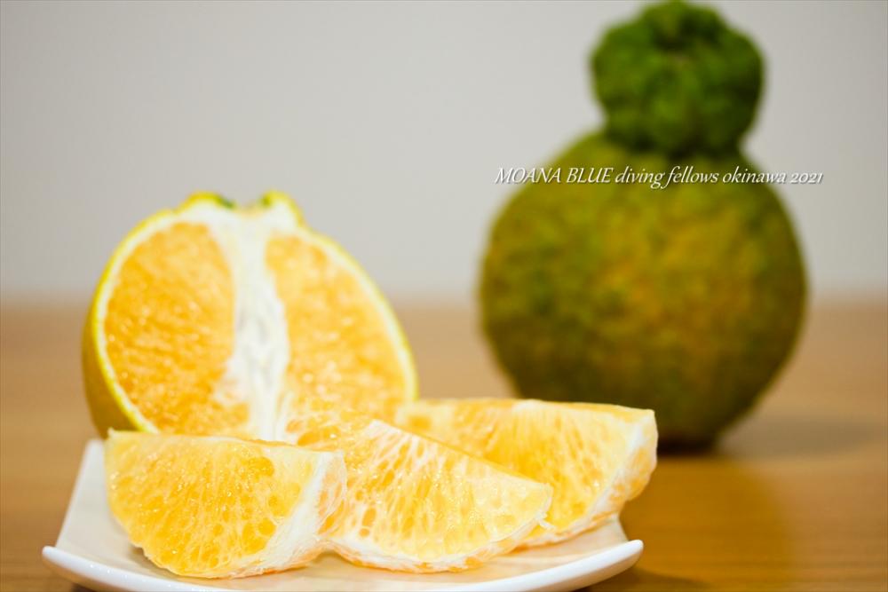 デコポン|沖縄フルーツ