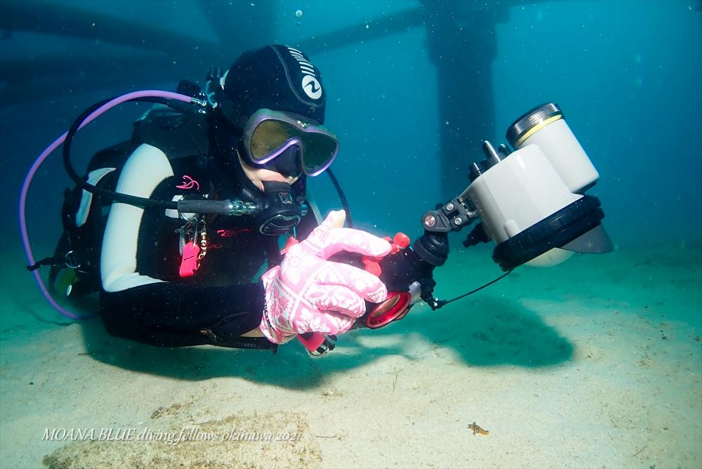 水中カメラをもっと楽しく