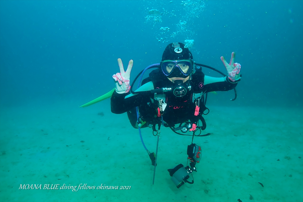 沖縄ウミウシダイビング ファンダイビング