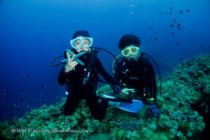 沖縄ボート体験ダイビング|恩納村ダイビングショップモアナブルー