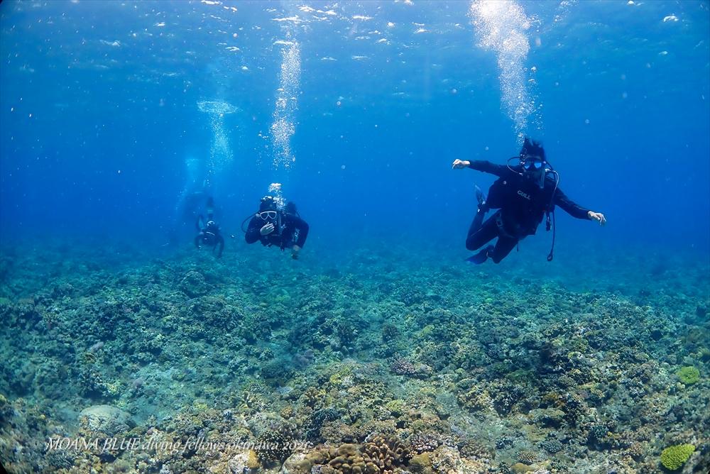 沖縄ボートファンダイビング ケラマ諸島