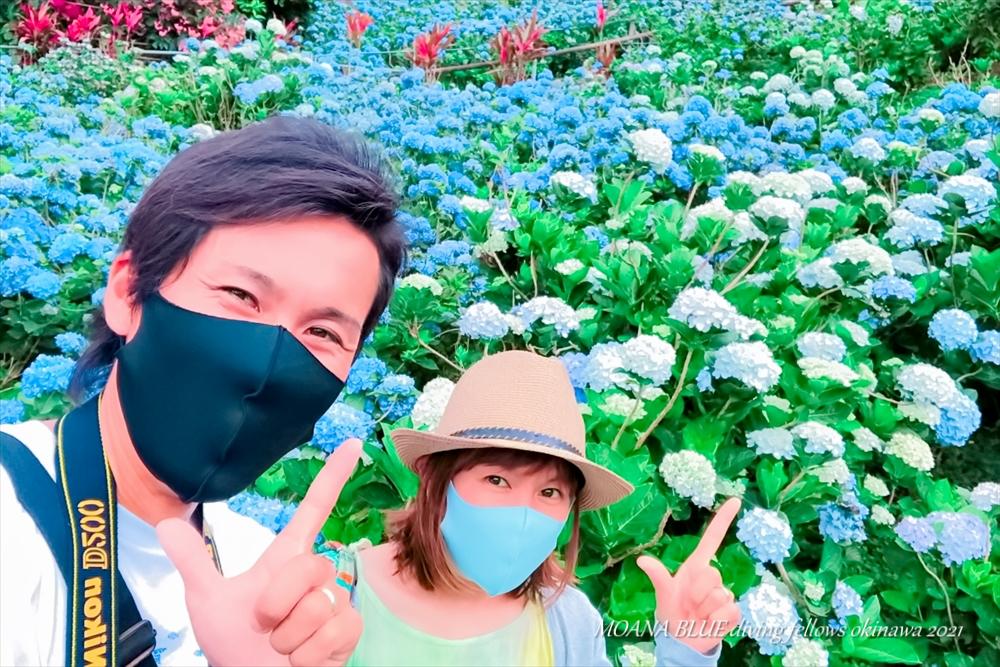 沖縄絶景スポット|本部町よへなあじさい園