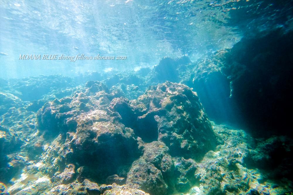 沖縄体験ダイビング 青の洞窟
