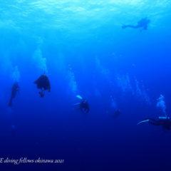 沖縄本島最強ポイント|トライアングル