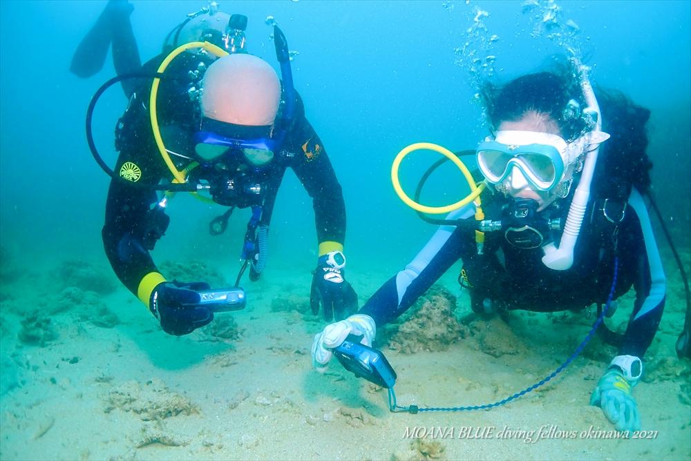 沖縄ファンダイビング沖縄|牧港ビーチ