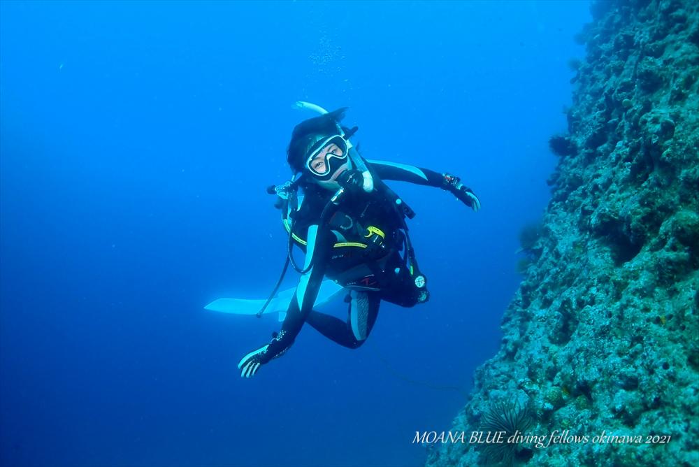 恩納村ファンダイビング|沖縄ボートダイビング