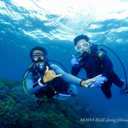 ビーチ体験ダイビング|沖縄ダイビングショップ