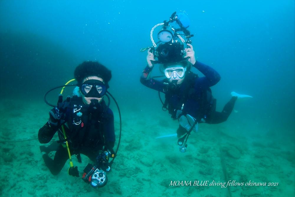 沖縄フォトダイビング ファンダイビング