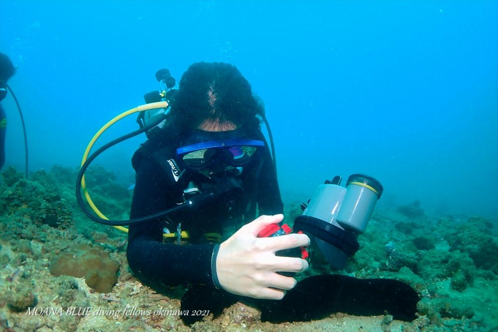 PADIアドヴァンスド・オープン・ウォーター・ダイバー講習|沖縄ダイビングショップ