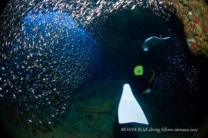 糸満ボートファンダイビング|沖縄水中写真専門店