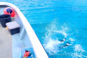 瀬底島ボートファンダイビング|沖縄水中写真専門店
