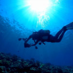 沖縄ボートファンダイビング|水中動画クリエイター