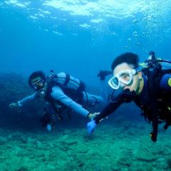 沖縄体験ダイビング|沖縄ダイビングショップ