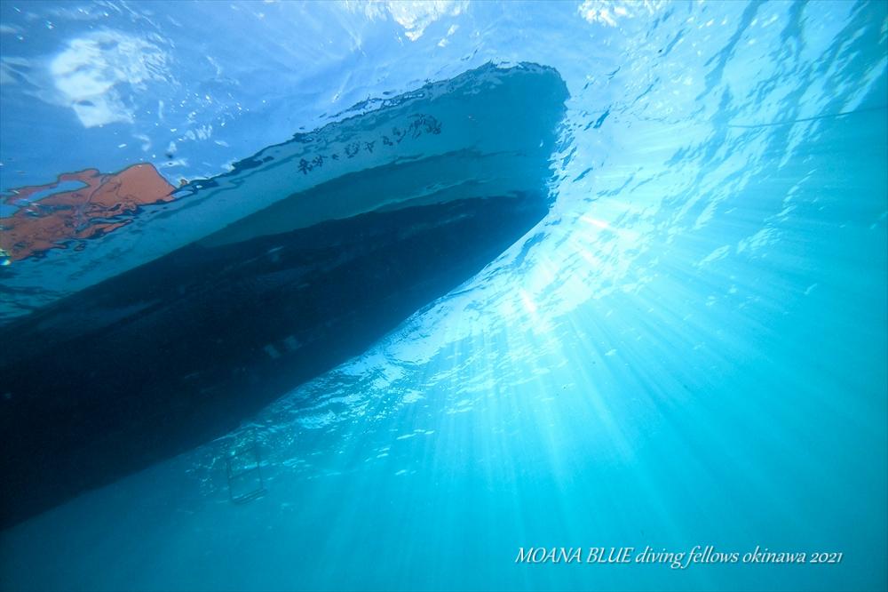 沖縄ボートファンダイビング 水中動画クリエイター